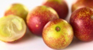 CamuCamu Fruit